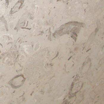 aurisinafioritaの写真